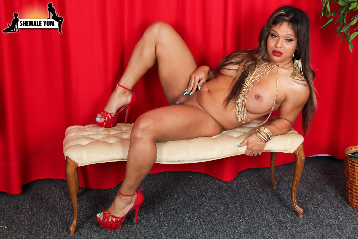 from Leonidas chubby latina shemales